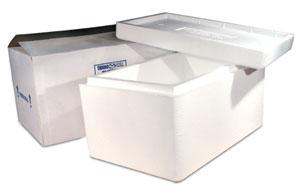 Insulated Shippers | Cold Packs